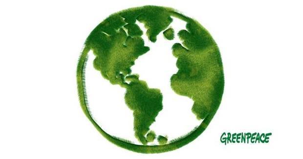 Stažiranje u Greenpeace International u Amsterdamu