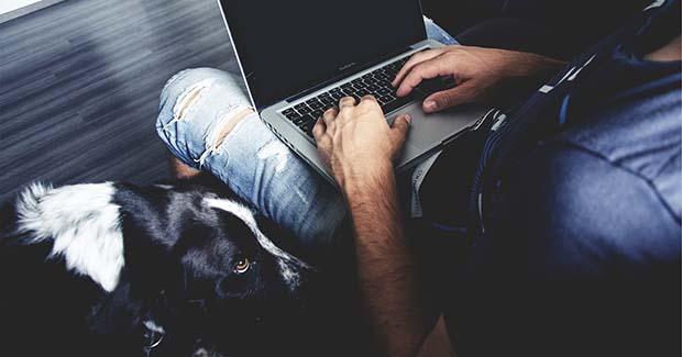 Istraživanje: Kako psi pomažu studentima pod stresom