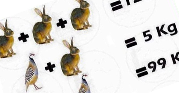 Zadatak na kojem su mnogi pali: Kolika je ukupna masa ptice, zeca i vepra?