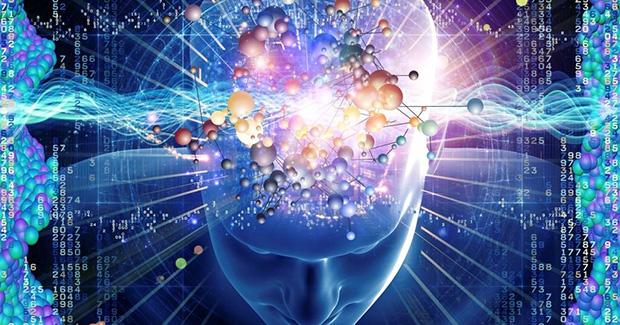Gardnerova teorija višestruke inteligencije: Koju vi posjedujete?