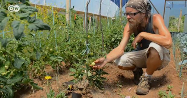 U potrazi za boljim životom: Mladi napuštaju grad i odlaze na selo baviti se agrobiznisom