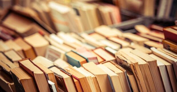 Gospodar knjiga sa smetljišta [VIDEO]