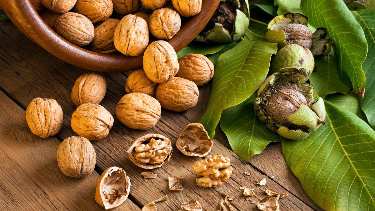 Zdravom prehranom do boljeg pamćenja