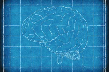 Poziv za slanje sažetaka u okviru Tuzla Brain Week 2018