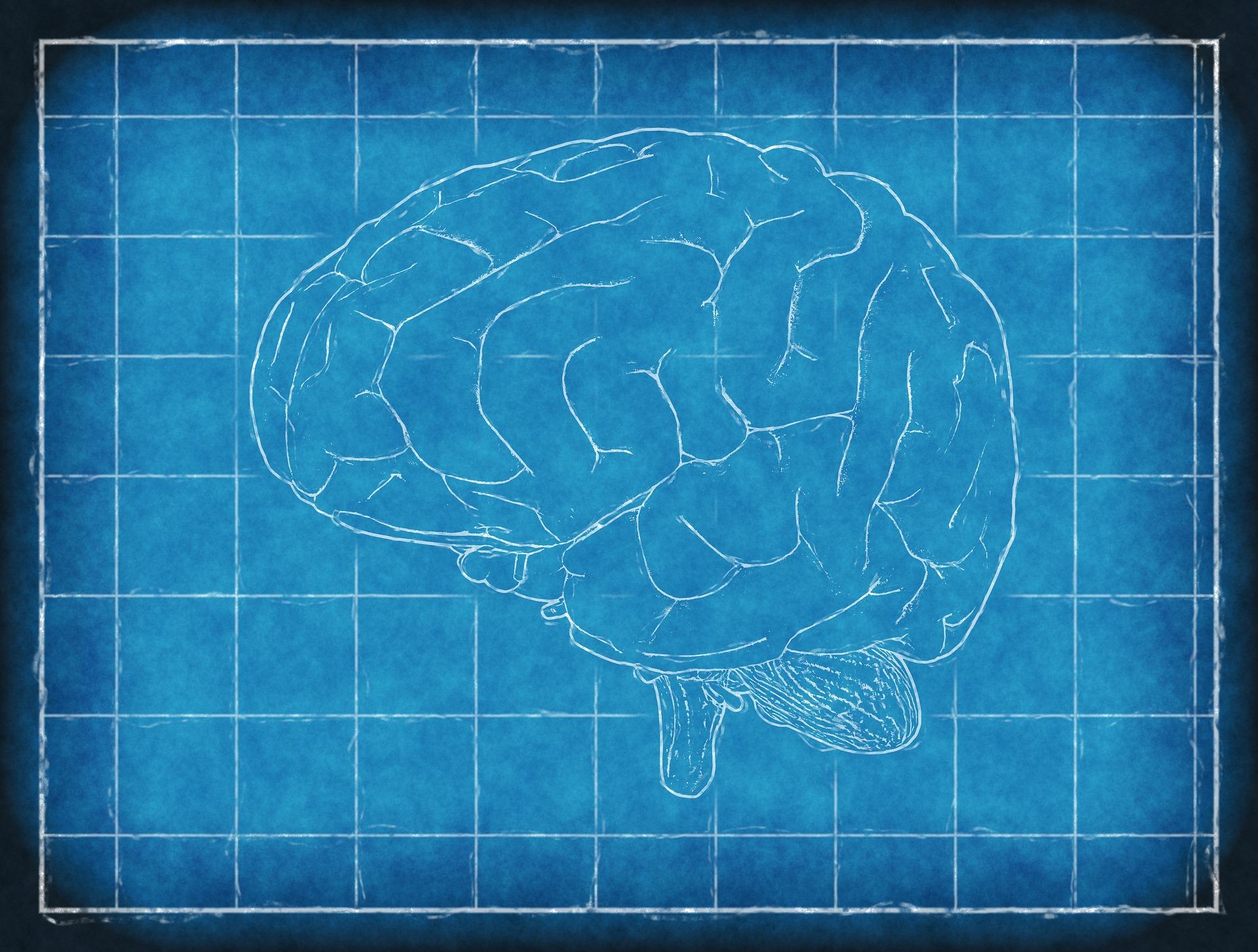 Znate li svoj IQ? Prijavite se na Mensa testiranje inteligencije