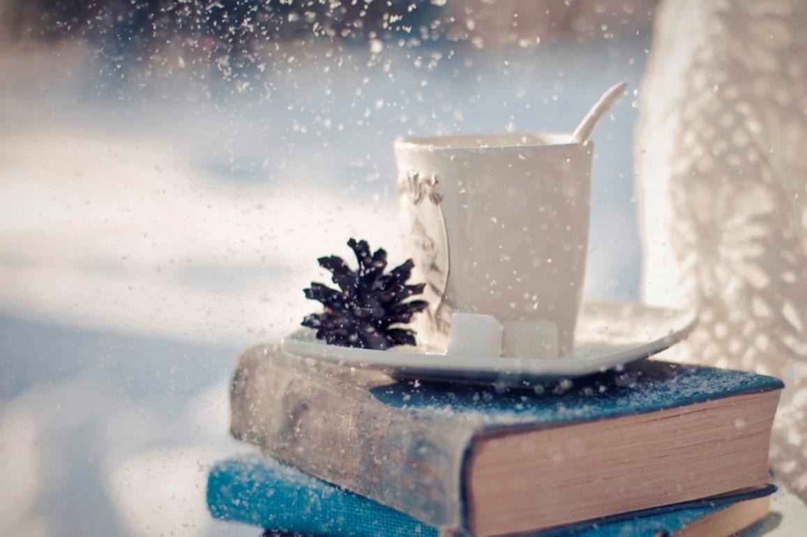Provedite praznike u društvu knjige
