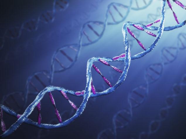 Ekspert u genetici objašnjava kako su iskustva iz najranijeg doba života upisana u našu DNK