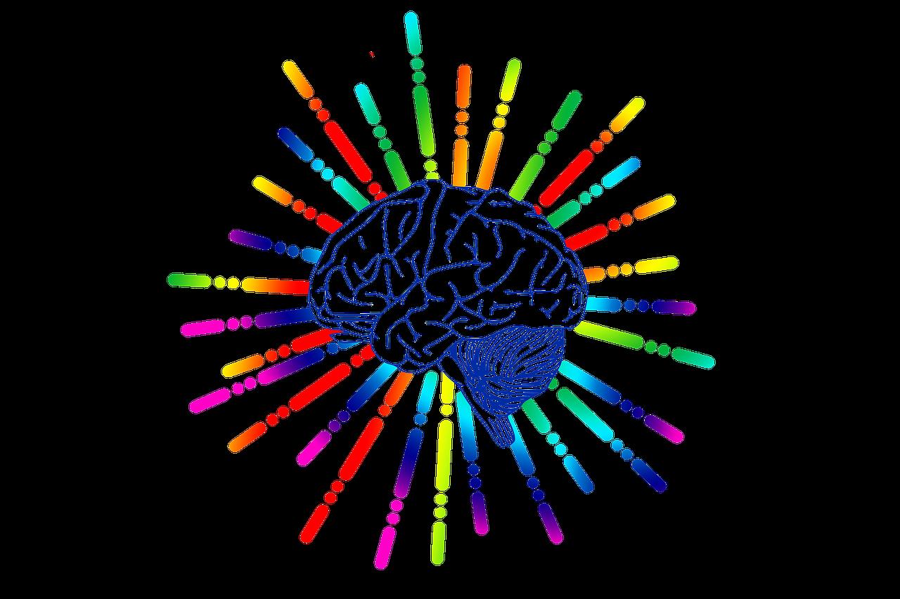 Brzi test: Odgovorite na ova pitanja i testirajte kako vam radi mozak