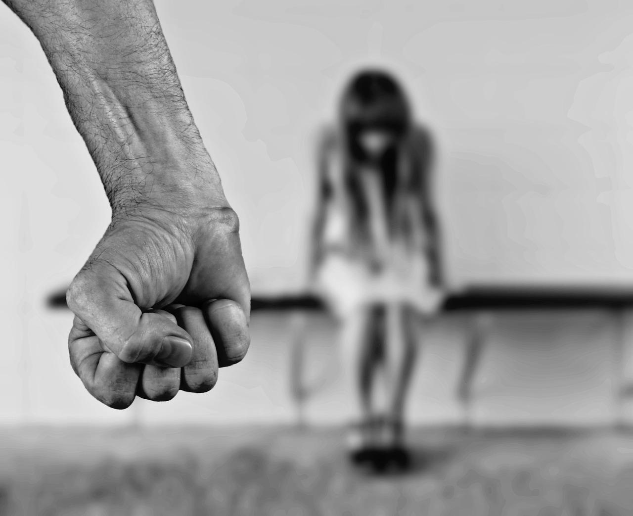 """Centar za kulturu dijaloga (CKD) započeo projekat """"Zajedno protiv maloljetničkog nasilja"""""""