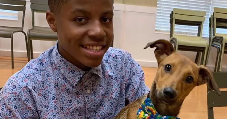 Dječak pravi leptir-mašne za pse u skloništima da im pomogne pri udomljavanju