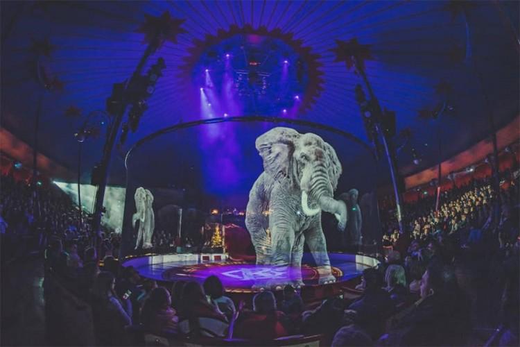Pogledajte kako izgleda cirkus u kojem nema pravih životinja
