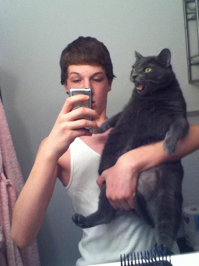 Mačkama su dosadili glupi selfiji pa su vlasnicima jasno pokazale svoje nezadovoljstvo
