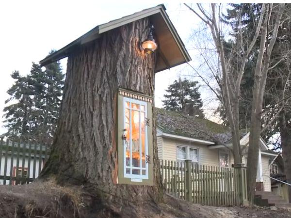 Od 110 godina starog drveta nastala je najoriginalnija i najslađa biblioteka ikada