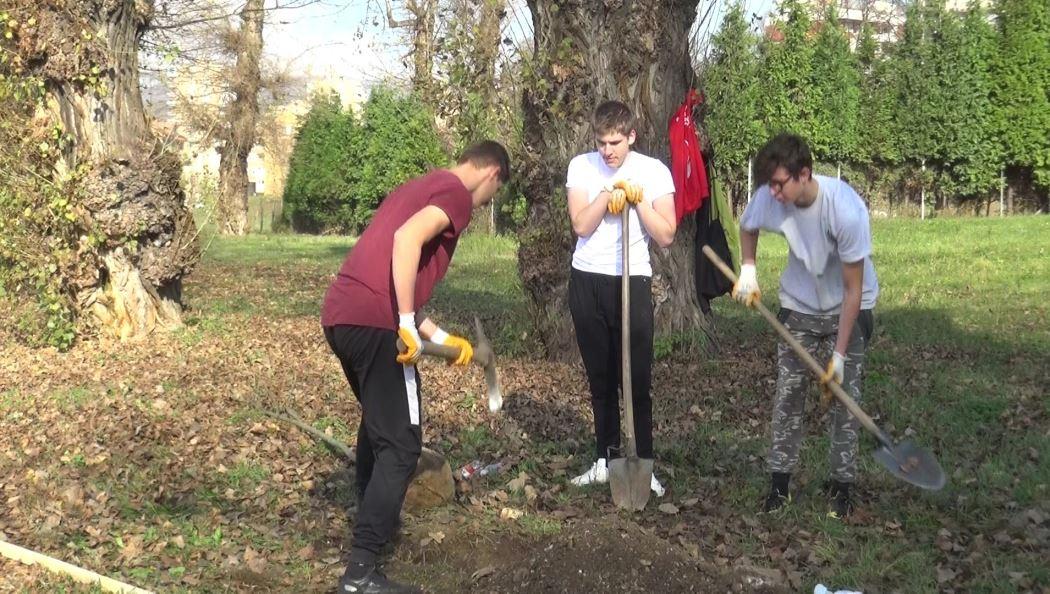 """Mladi zenički aktivisti u okviru projekta """"Djeluj ekoistično"""" zasadili sadnice jasena"""