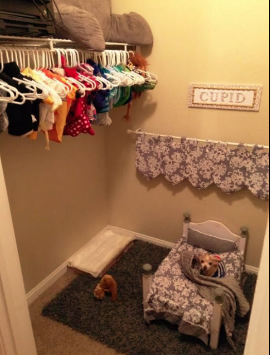 Nerazdvojni već 12 godina: Studentica napravila sobu za svog psa – u ormaru