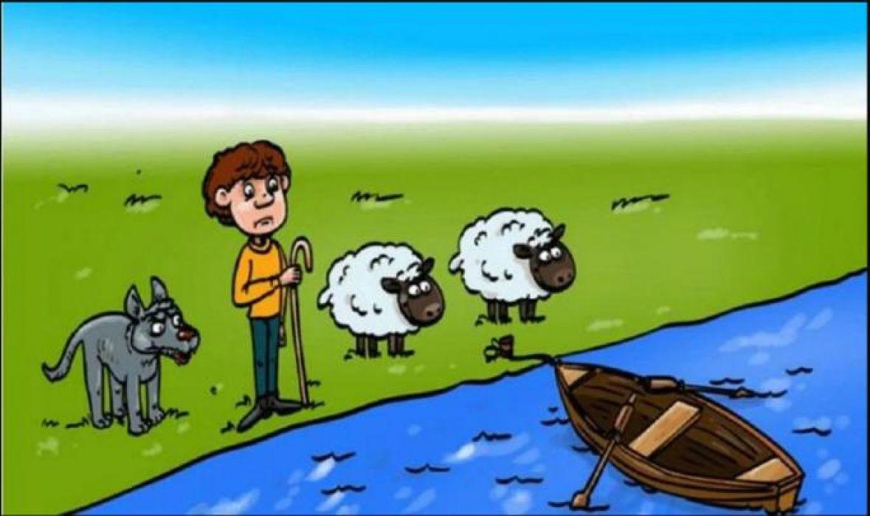 Zagonetka sa čobanom i ovcama je razbijesnila mnoge: Možete li je vi riješiti?