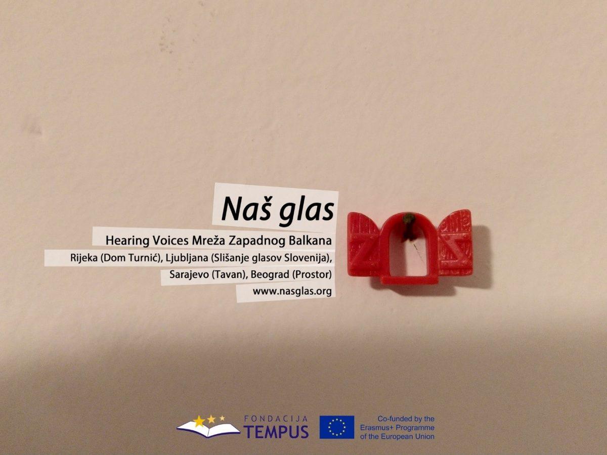 Objavljena je knjiga Naš glas: Preuzmite elektronsko izdanje