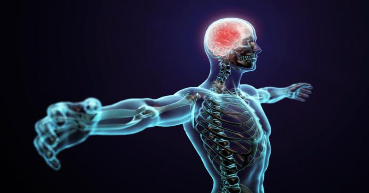 Zanimljivosti o vašem tijelu za koje niste znali