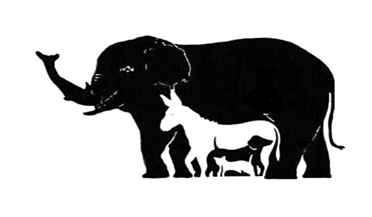 Zagrijete moždane vijuge: Koliko životinja vidite?