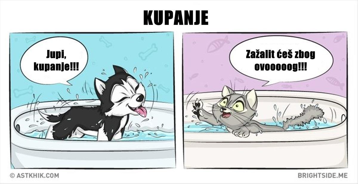 Ilustracije koje pokazuju razliku između psa i mačke kao ljubimca