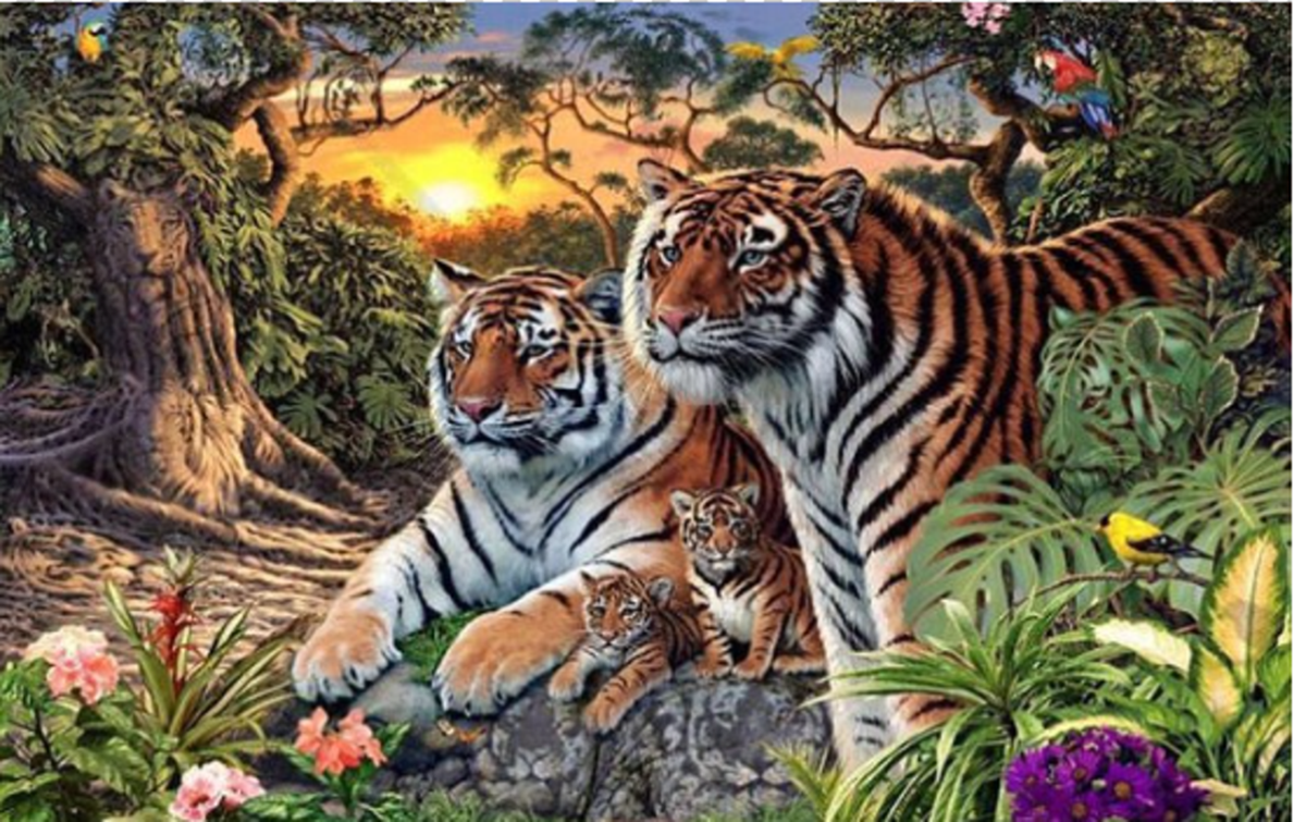 Mozgalica: Koliko tigrova možete pronaći na fotografiji?