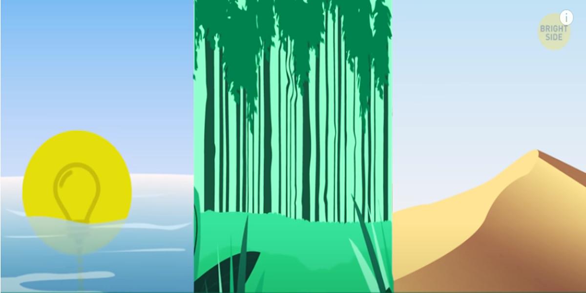 Mozgalica: Gdje je najbolje da sleti skakač s padobranom – pustinja, okean ili šuma?