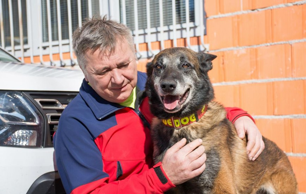 Pas Draco kojeg su htjeli uspavati spasio je ženu zatrpanu u potresu