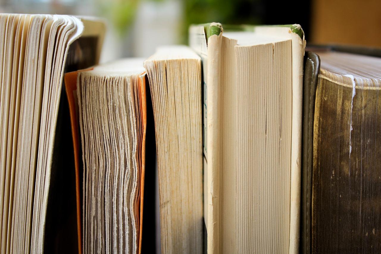 Razmjena knjiga u hercegovačkoj općini, cilj popularizacija knjige