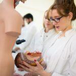 Students of medicine examining anatomical model