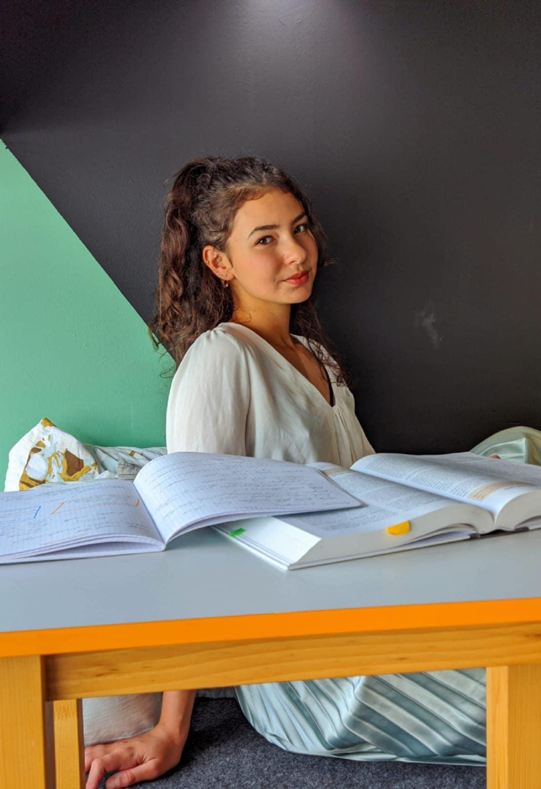 Foto: Sarajlić Emina / Hub Homework