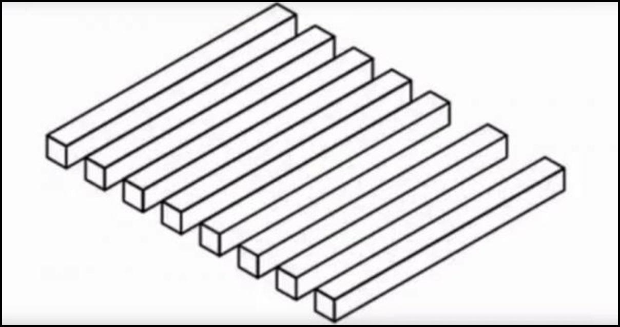 Optička iluzija / Foto: Youtube screenshot