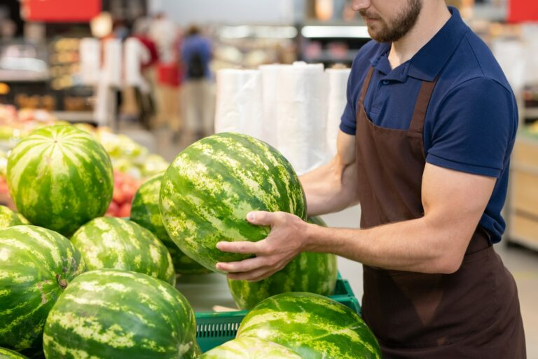 Worker Setting Out Watermelons