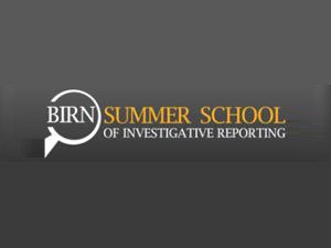 BIRN ljetna škola 2013