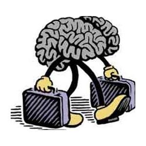 """""""Brain drain"""" kao negativan trend koji se ne smije njegovati"""