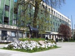 UNSA: Veterinarski fakultet dobio Kliniku za hirurgiju